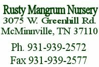 Rusty Mangrum Nursery McMinnville TN. Wholesale Nursery - Fruit Trees - Peach, Apple, Plum and Pear Trees. We also have shade and ornamental trees and seedlings.